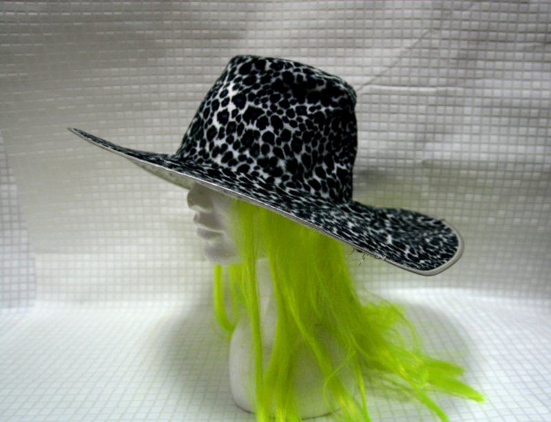 Шляпа Ведьмы